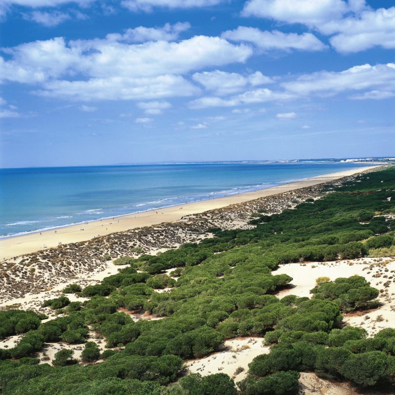 © Turespaña Punta umbría Playa