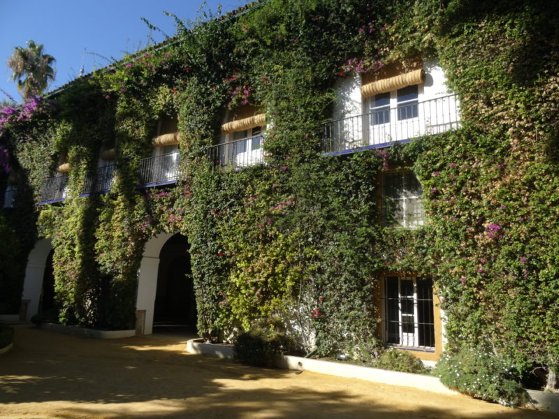 Palacio-de-las-Dueñas-e1494188099854